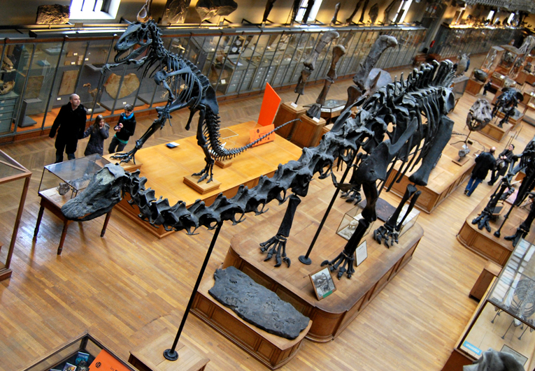 3D Printing Dinosaurs