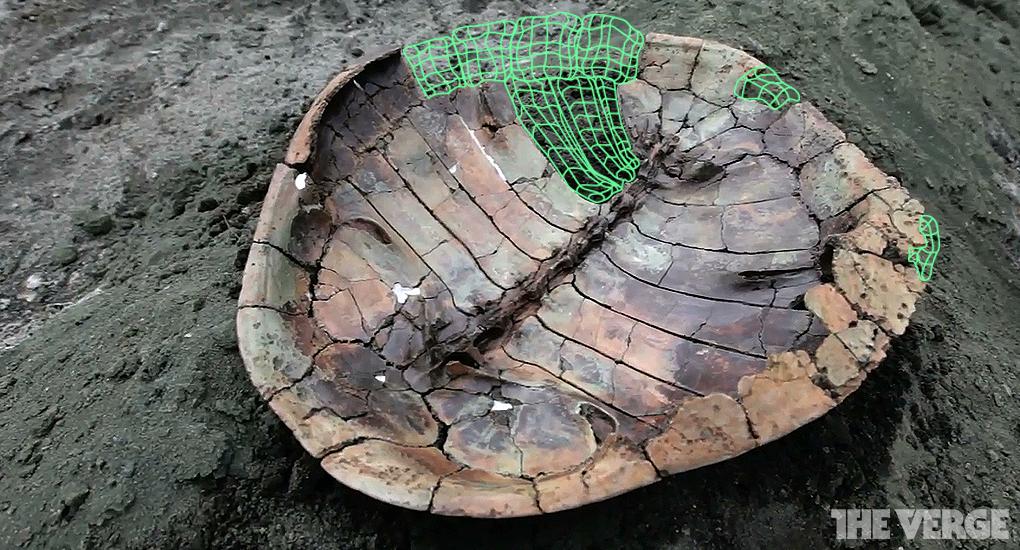 3D Scanning Fossils