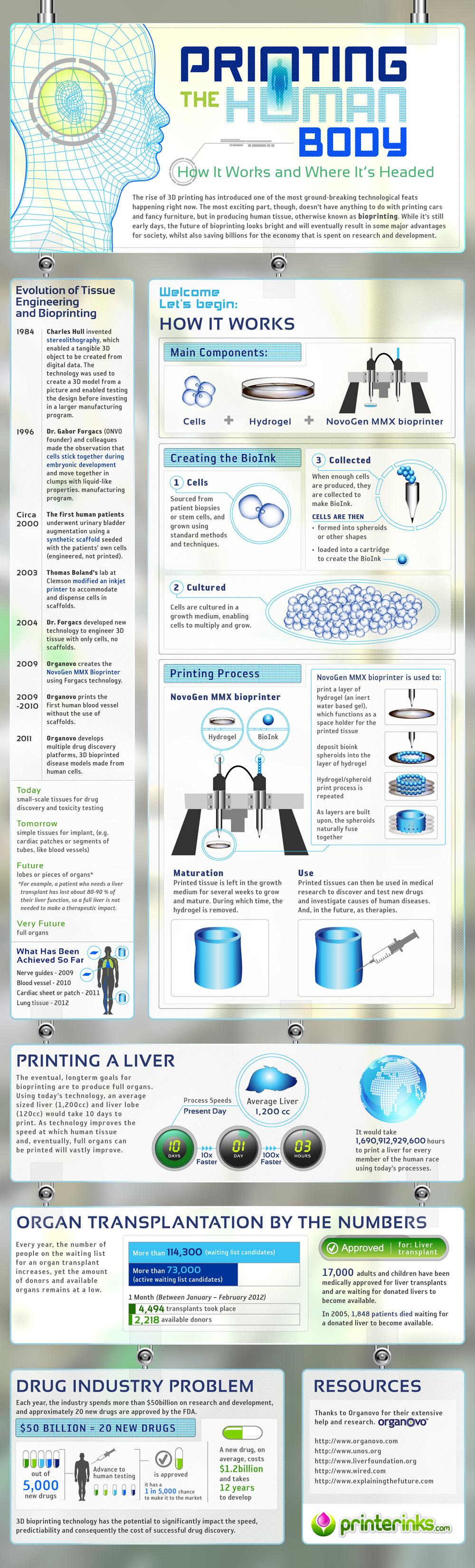 Infographic Bio 3D Printing