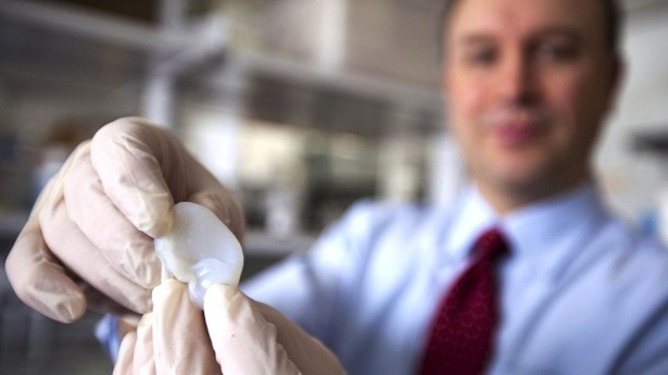 Cornell Prof 3D Prints Human Ear