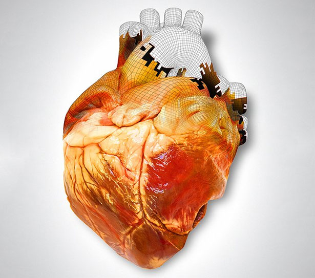 3D Printing Medical Heart The Body Shop